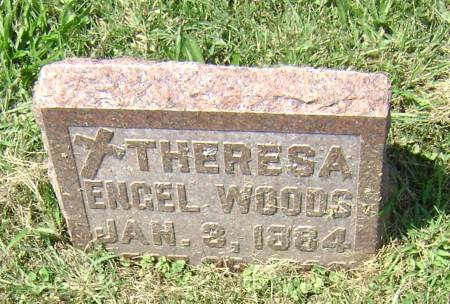 ENGEL WOODS, THERESA - Polk County, Iowa | THERESA ENGEL WOODS