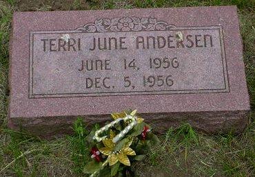 ANDERSEN, TERRI JUNE - Pottawattamie County, Iowa | TERRI JUNE ANDERSEN