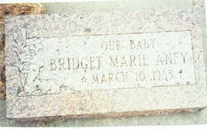 ANEY, BRIDGET MARIE - Pottawattamie County, Iowa | BRIDGET MARIE ANEY