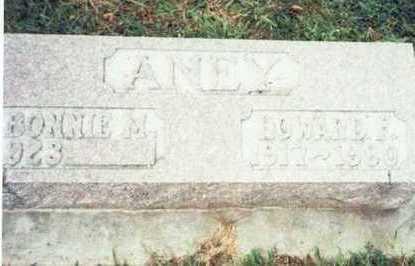 ANEY, HOWARD F. - Pottawattamie County, Iowa | HOWARD F. ANEY