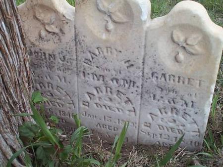 BARRETT, JOHN J., HARRY H., & GARRET - Pottawattamie County, Iowa | JOHN J., HARRY H., & GARRET BARRETT