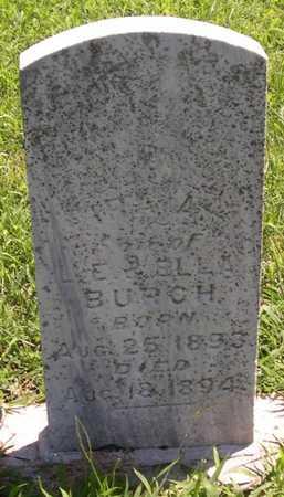 BURCH, IRA A. - Pottawattamie County, Iowa | IRA A. BURCH