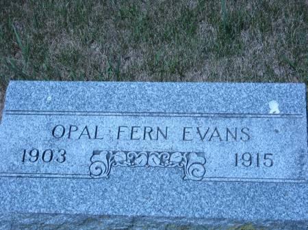 EVANS, OPAL FERN - Pottawattamie County, Iowa | OPAL FERN EVANS
