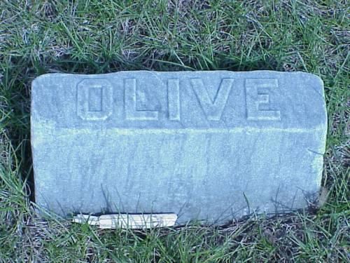 HAIGHT, OLIVE - Pottawattamie County, Iowa | OLIVE HAIGHT