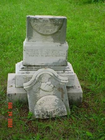 HORNBY, MARY E. - Pottawattamie County, Iowa   MARY E. HORNBY