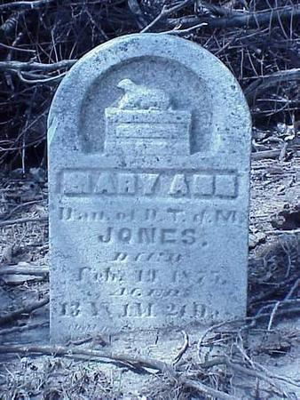 JONES, MARY ANN - Pottawattamie County, Iowa | MARY ANN JONES