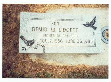 LIDGETT, DAVID W. - Pottawattamie County, Iowa   DAVID W. LIDGETT