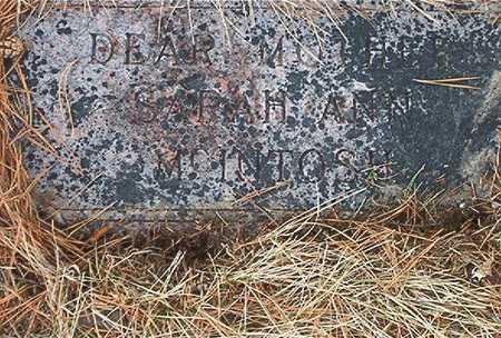MCINTOSH, SARAH ANN - Pottawattamie County, Iowa | SARAH ANN MCINTOSH