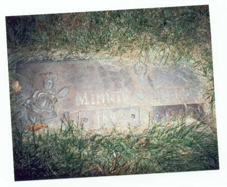 NIELSEN, MINNIE S. - Pottawattamie County, Iowa | MINNIE S. NIELSEN
