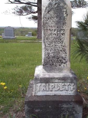 TRIPLETT, JULIA A. - Pottawattamie County, Iowa | JULIA A. TRIPLETT