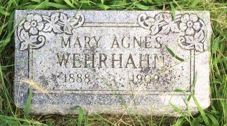 HALL WEHRHAHN, MARY AGNES - Pottawattamie County, Iowa | MARY AGNES HALL WEHRHAHN