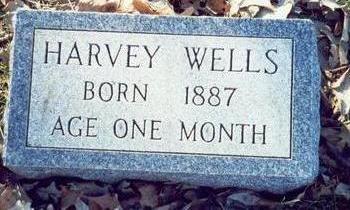 WELLS, HARVEY - Pottawattamie County, Iowa | HARVEY WELLS