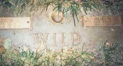 WILD, HELEN R. - Pottawattamie County, Iowa | HELEN R. WILD