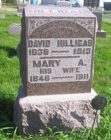 HILLIGAS, DAVID - Poweshiek County, Iowa | DAVID HILLIGAS