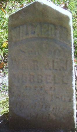HUBBELL, WILLARD M. - Poweshiek County, Iowa | WILLARD M. HUBBELL