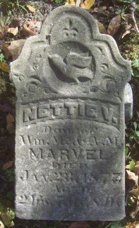MARVEL, NETTIE V. - Poweshiek County, Iowa | NETTIE V. MARVEL
