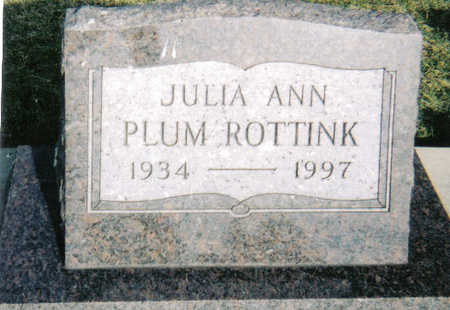 ROTTINK, JUDITH ANN - Poweshiek County, Iowa | JUDITH ANN ROTTINK