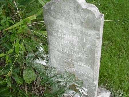 BUSHONG, SAMUEL L. - Poweshiek County, Iowa | SAMUEL L. BUSHONG