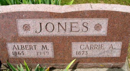 JONES, ALBERT M. - Ringgold County, Iowa | ALBERT M. JONES