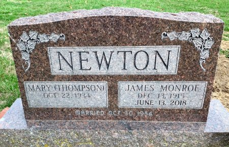 NEWTON, JAMES MONROE - Ringgold County, Iowa | JAMES MONROE NEWTON