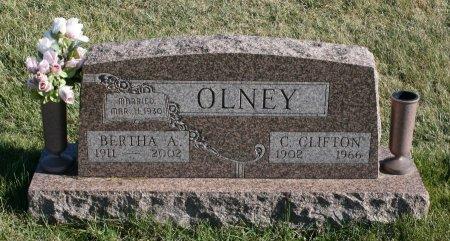 OLNEY, BERTHA - Ringgold County, Iowa | BERTHA OLNEY