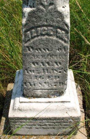 RICHARDS, ALICE M. - Ringgold County, Iowa   ALICE M. RICHARDS