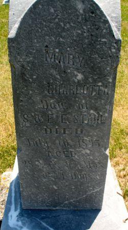 STAHL, MARY CHARLOTTA - Ringgold County, Iowa | MARY CHARLOTTA STAHL
