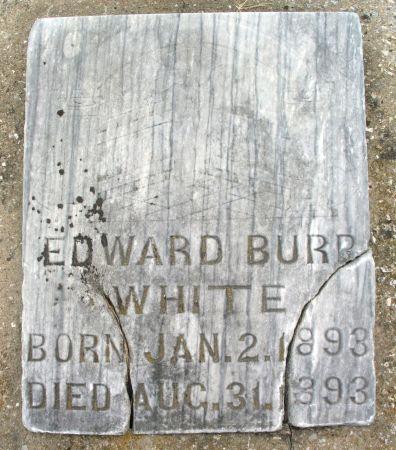 WHITE, EDWARD BURR - Ringgold County, Iowa | EDWARD BURR WHITE