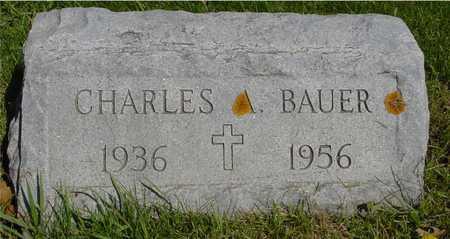 BAUER, CHARLES A. - Sac County, Iowa | CHARLES A. BAUER