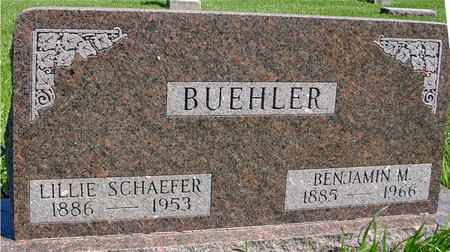 BUEHLER, BENJAMIN & LILLIE - Sac County, Iowa | BENJAMIN & LILLIE BUEHLER