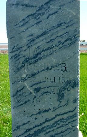 BUEHLER, JAKOB - Sac County, Iowa | JAKOB BUEHLER