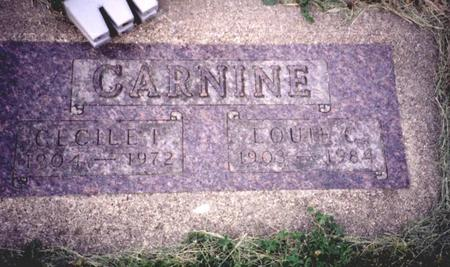CARNINE, LOUIE  C. - Sac County, Iowa | LOUIE  C. CARNINE