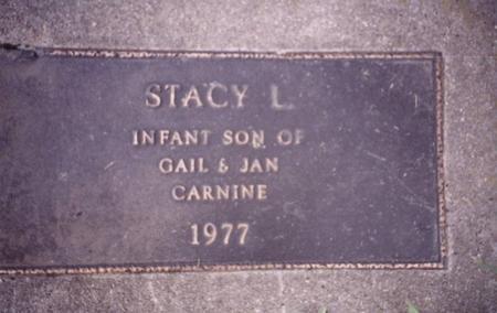 CARNINE, STACY  L. - Sac County, Iowa | STACY  L. CARNINE