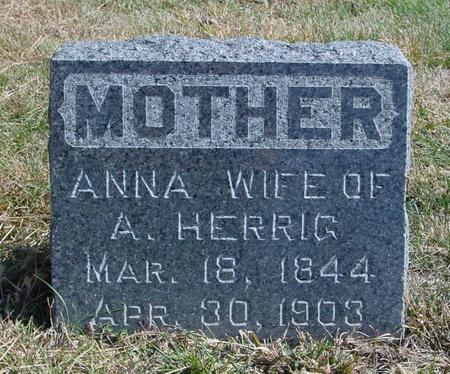 HERRIG, ANNA - Sac County, Iowa   ANNA HERRIG