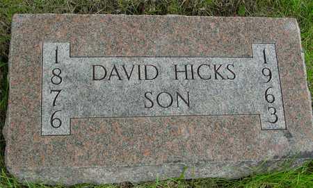 HICKS, DAVID - Sac County, Iowa | DAVID HICKS