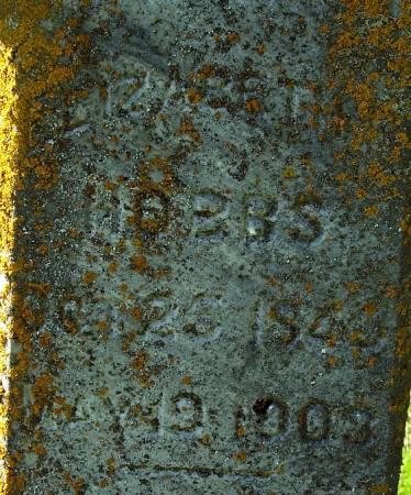 WREN HOBBS, ELIZABETH ELLEN - Sac County, Iowa   ELIZABETH ELLEN WREN HOBBS