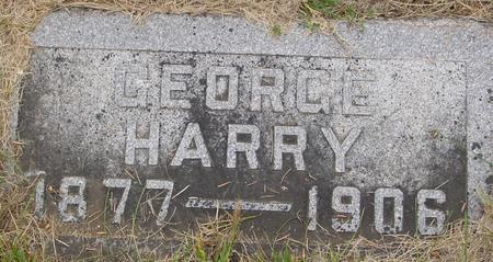 IRWIN, GEORGE HARRY - Sac County, Iowa | GEORGE HARRY IRWIN