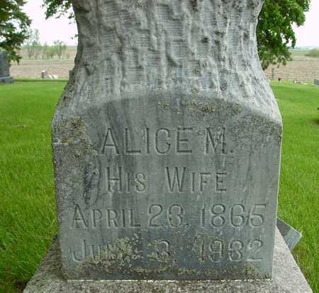 MEAD, ALICE M. - Sac County, Iowa   ALICE M. MEAD