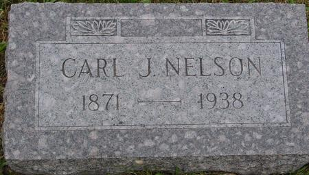 NELSON, CARL J. - Sac County, Iowa | CARL J. NELSON