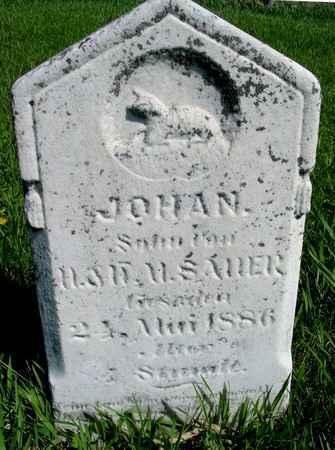 SAUER, JOHN - Sac County, Iowa | JOHN SAUER