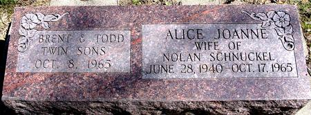 SCHNUCKEL, ALICE JOANNE - Sac County, Iowa | ALICE JOANNE SCHNUCKEL