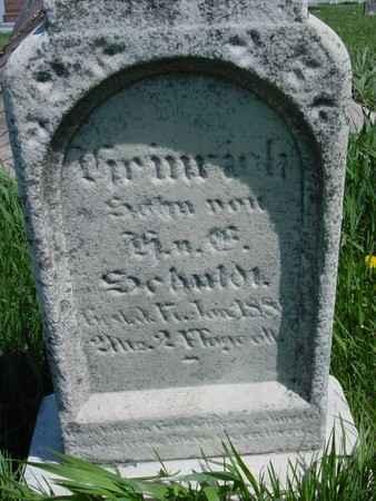 SCHULDT, SON - Sac County, Iowa   SON SCHULDT