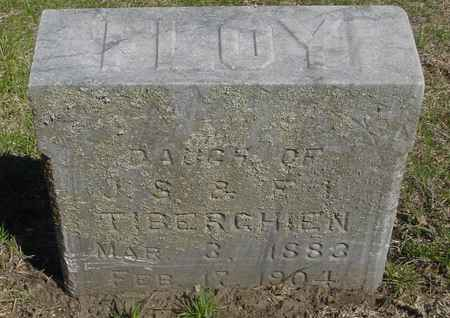 TIBERGHIEN, FLOY - Sac County, Iowa | FLOY TIBERGHIEN
