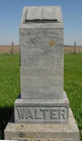 WALTER, FAMILY MONUMENT - Sac County, Iowa | FAMILY MONUMENT WALTER