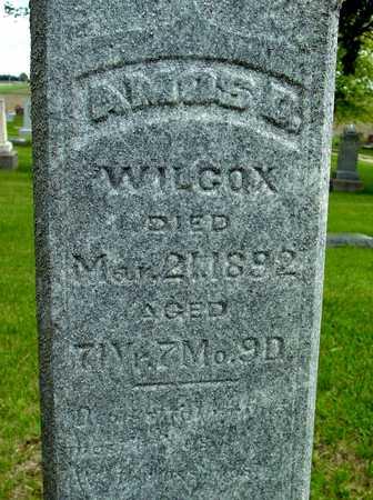 WILCOX, AMOS D. - Sac County, Iowa | AMOS D. WILCOX