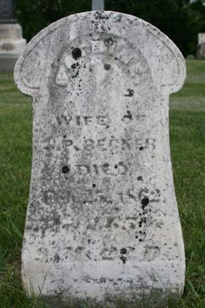 BECKER, CATRINE - Scott County, Iowa | CATRINE BECKER