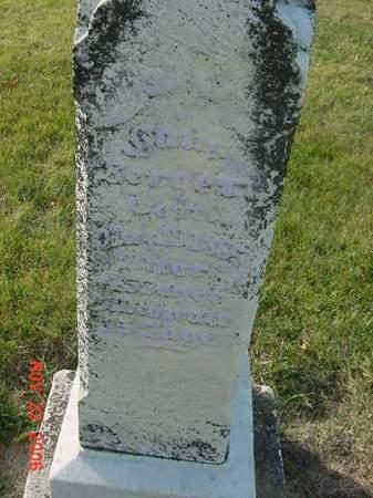 BERGERT, HANS - Scott County, Iowa | HANS BERGERT