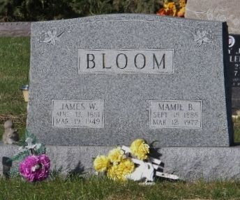 BLOOM, MAMIE B - Scott County, Iowa | MAMIE B BLOOM