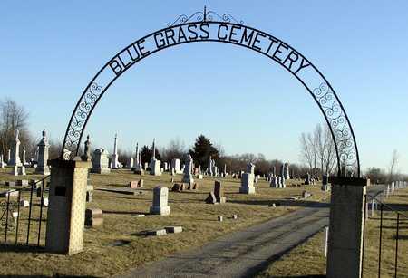 BLUE GRASS, CEMETERY - Scott County, Iowa | CEMETERY BLUE GRASS
