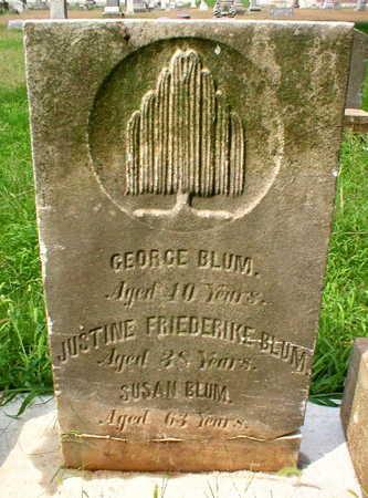 BLUM, GEORGE - Scott County, Iowa | GEORGE BLUM